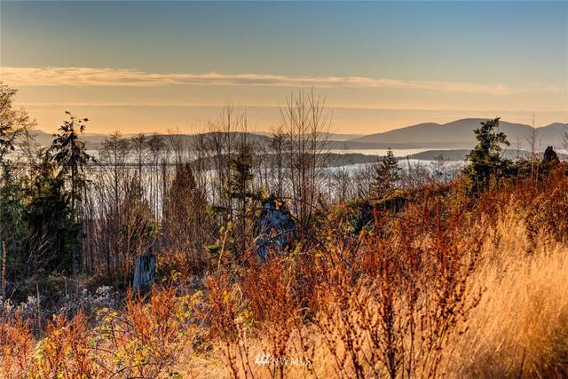 3310 Blanchard Knob Trail, Bow, WA 98232 (#1695994) :: My Puget Sound Homes