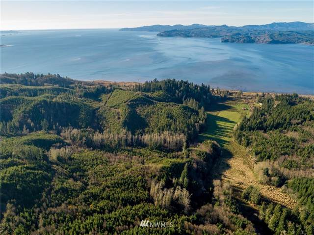 2 Altoona Pillar Rock Road, Rosburg, WA 98643 (MLS #1697079) :: Community Real Estate Group