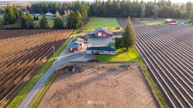 805 Birch Bay Lynden Road, Lynden, WA 98264 (#1697908) :: Ben Kinney Real Estate Team