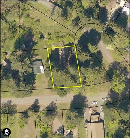 125 Slalom Way, Packwood, WA 98361 (#1698033) :: Pickett Street Properties