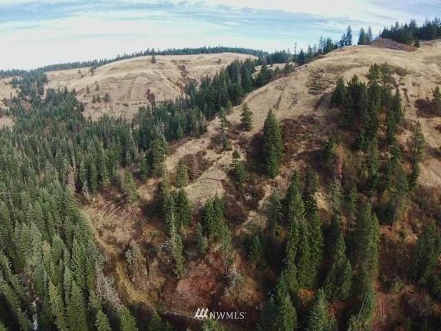 0 S Fork Coppei Creek Road, Waitsburg, WA 99361 (#1698265) :: Alchemy Real Estate