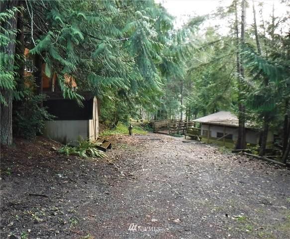 91 Wolf Road, Quilcene, WA 98376 (#1710093) :: My Puget Sound Homes