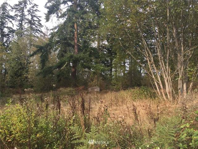 0 West Shore Road, Anacortes, WA 98221 (#1710839) :: Better Properties Real Estate