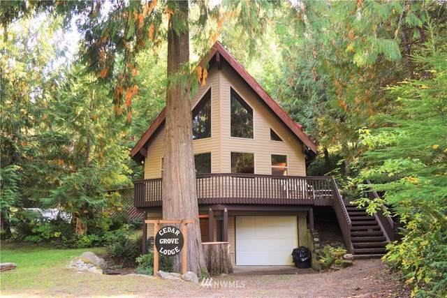 180 Forest Ridge Drive, Packwood, WA 98361 (#1711976) :: TRI STAR Team | RE/MAX NW