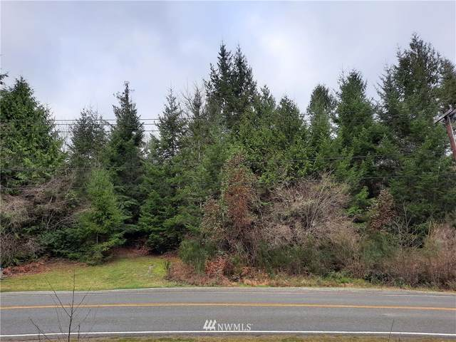 0 Homestead Drive, Allyn, WA 98524 (#1712266) :: Better Properties Real Estate