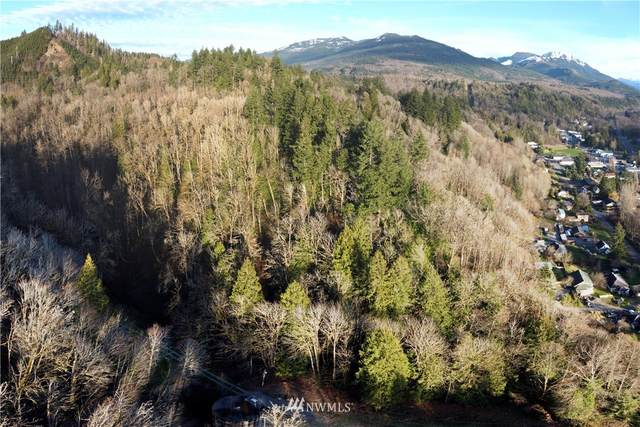 20 Acres, Concrete, WA 98237 (#1712451) :: Mike & Sandi Nelson Real Estate