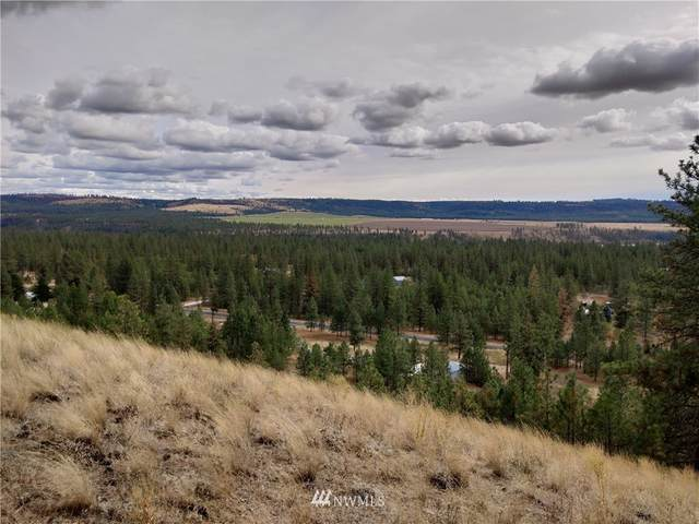 7553 Kimberly Drive Way, Ford, WA 99013 (#1712760) :: Better Homes and Gardens Real Estate McKenzie Group