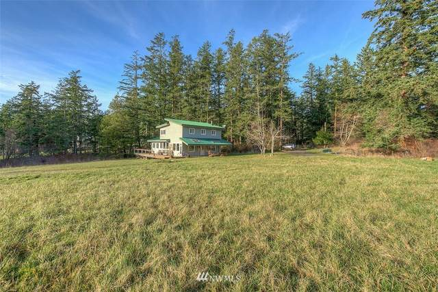 89 Cormorant Bay Road, Orcas Island, WA 98245 (#1712974) :: My Puget Sound Homes