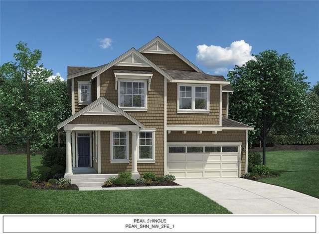 3029 SE 14th Street, North Bend, WA 98045 (#1713362) :: Better Properties Real Estate