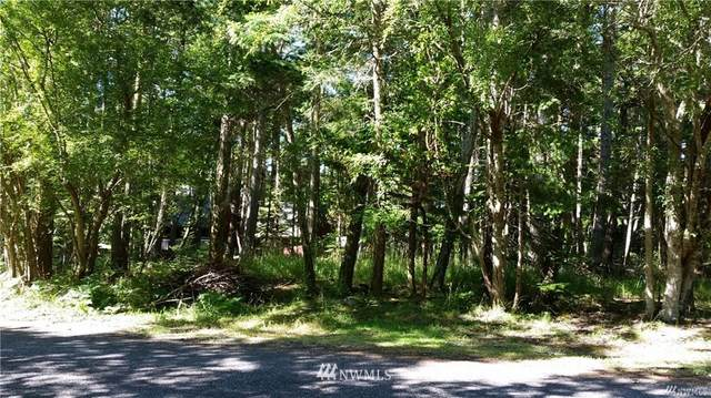 0 Island Drive, San Juan Island, WA 98250 (#1713550) :: Better Properties Real Estate