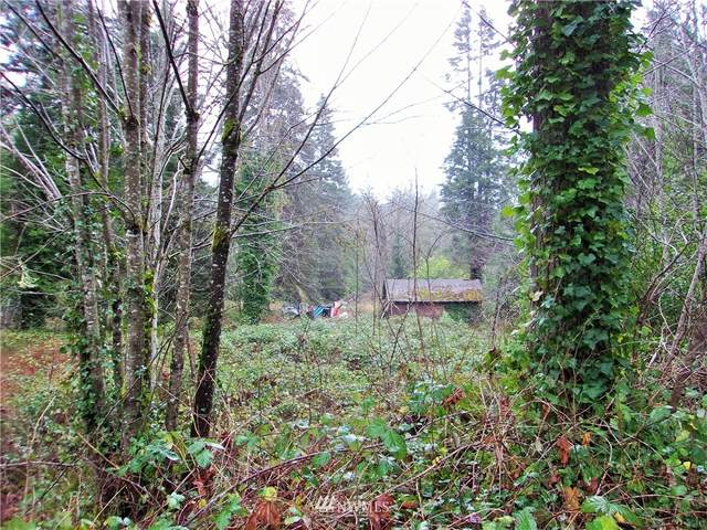 293590 Us 101 Highway, Quilcene, WA 98376 (#1713796) :: Better Properties Real Estate