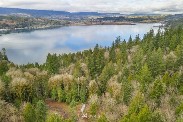 4 E Quilcene Road, Quilcene, WA 98376 (#1713845) :: The Robinett Group