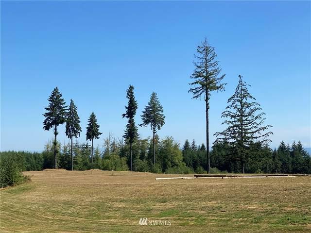 305 Bullhead, Castle Rock, WA 98611 (#1714673) :: Mike & Sandi Nelson Real Estate