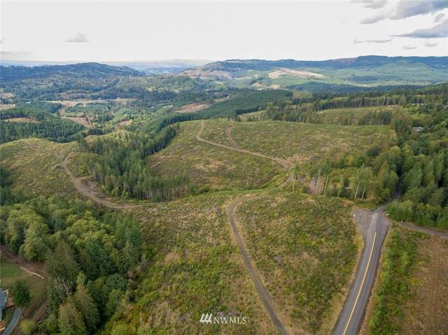 0 N Bodine Road, Kelso, WA 98626 (#1714778) :: Better Properties Real Estate