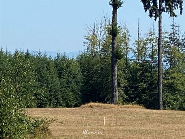 357 Bullhead Drive, Castle Rock, WA 98611 (#1714892) :: Mike & Sandi Nelson Real Estate