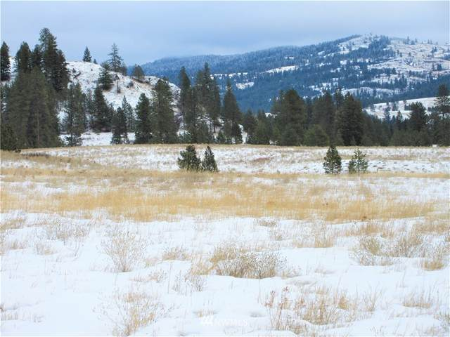 0 Malo Lake Road, Malo, WA 99150 (#1715914) :: The Shiflett Group