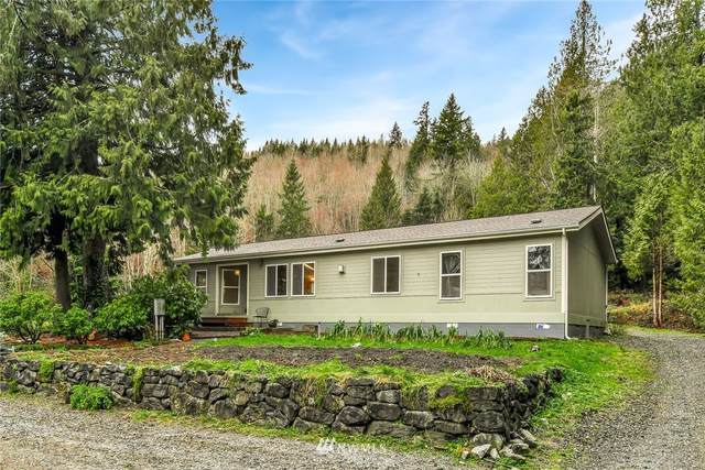 5444 Mt Baker Highway, Deming, WA 98244 (#1716374) :: Ben Kinney Real Estate Team