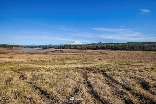 43003 22nd Avenue E, Eatonville, WA 98328 (#1716663) :: Mike & Sandi Nelson Real Estate