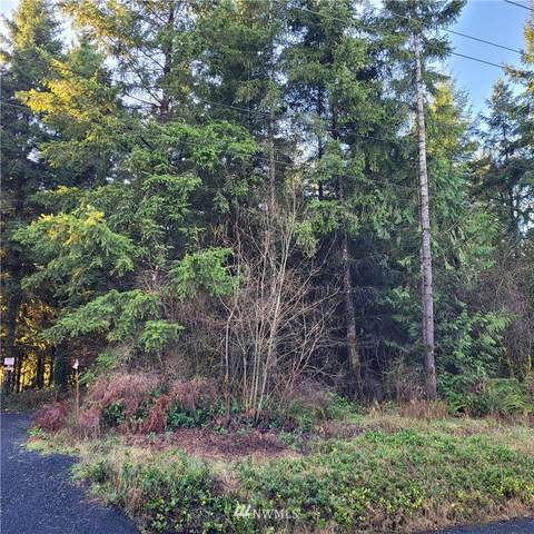 249 Avery Road, Winlock, WA 98596 (#1717039) :: My Puget Sound Homes
