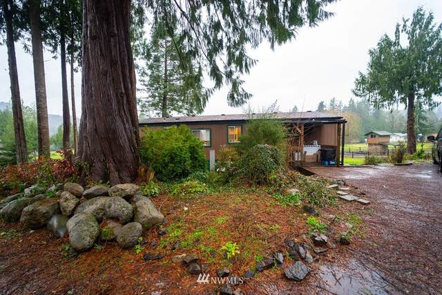 1555 Ph 10, Castle Rock, WA 98611 (#1717192) :: Mike & Sandi Nelson Real Estate