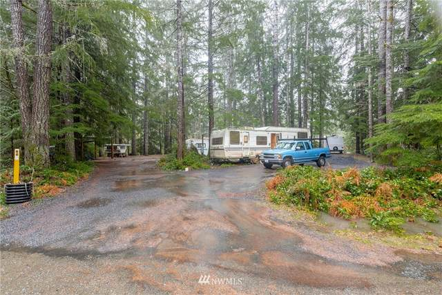 71 N Wigeon, Hoodsport, WA 98548 (MLS #1717321) :: Brantley Christianson Real Estate