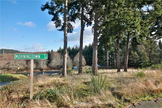1423 Morningside Lane, Freeland, WA 98249 (#1717357) :: Pickett Street Properties