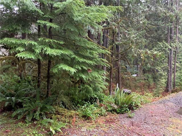 0 W Cascade Drive, Marblemount, WA 98267 (#1717444) :: Better Properties Real Estate