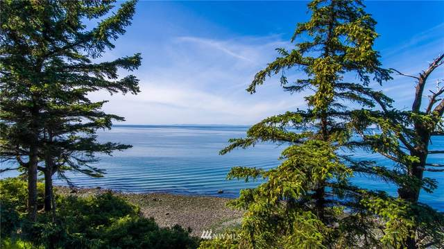 145 West Beach Road, Oak Harbor, WA 98277 (#1717499) :: Better Properties Real Estate