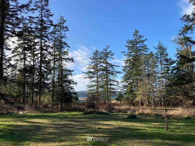 0 Bowers Rd., Decatur Island, WA 98221 (#1717632) :: The Shiflett Group