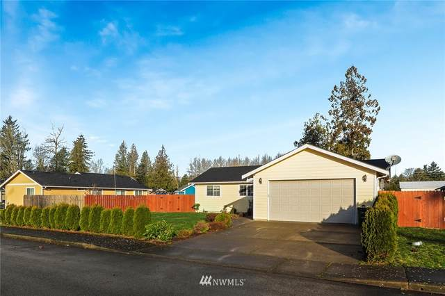 6480 Trigg Woods Lane, Ferndale, WA 98248 (#1717895) :: TRI STAR Team | RE/MAX NW