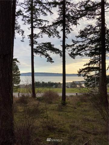 2361 Strawberry Point Road, Oak Harbor, WA 98277 (MLS #1718024) :: Brantley Christianson Real Estate