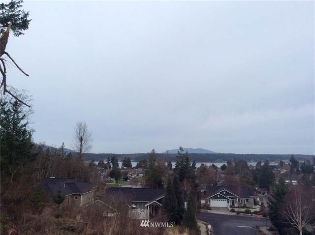 0 C Ave, Anacortes, WA 98221 (#1718025) :: Tribeca NW Real Estate