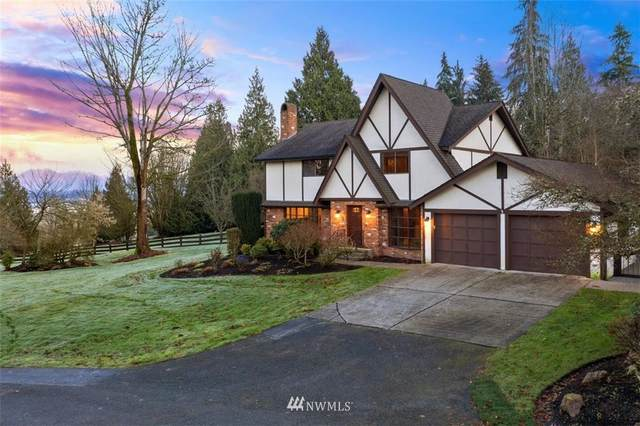 14523 141ST AVENUE SE, Snohomish, WA 98290 (#1718167) :: Better Homes and Gardens Real Estate McKenzie Group