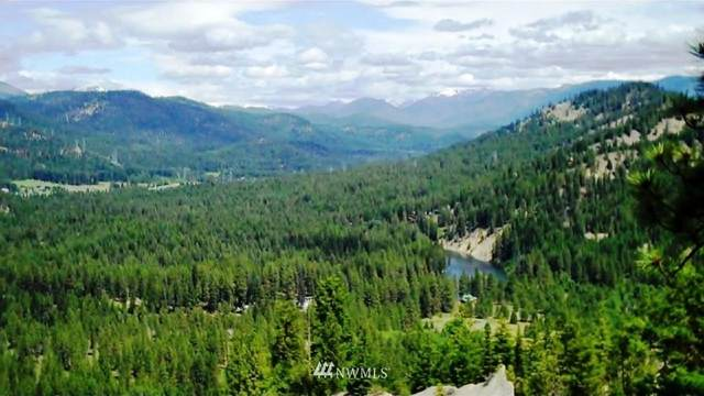 3 Chumstick Highway, Leavenworth, WA 98826 (MLS #1718388) :: Community Real Estate Group