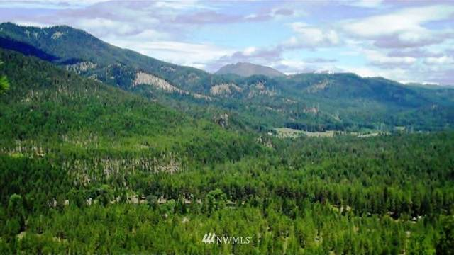 5 Chumstick Highway, Leavenworth, WA 98826 (MLS #1718397) :: Community Real Estate Group