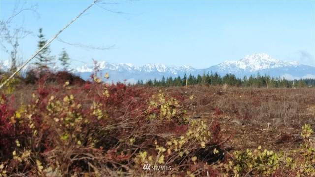 0 Xx Benson Ridge Rd Road, Grapeview, WA 98546 (#1718445) :: Canterwood Real Estate Team