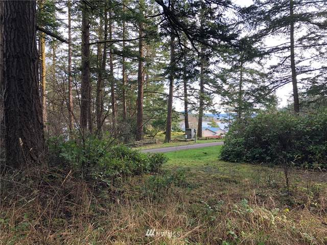 156 Center Island, Center Island, WA 98221 (#1718602) :: Pickett Street Properties