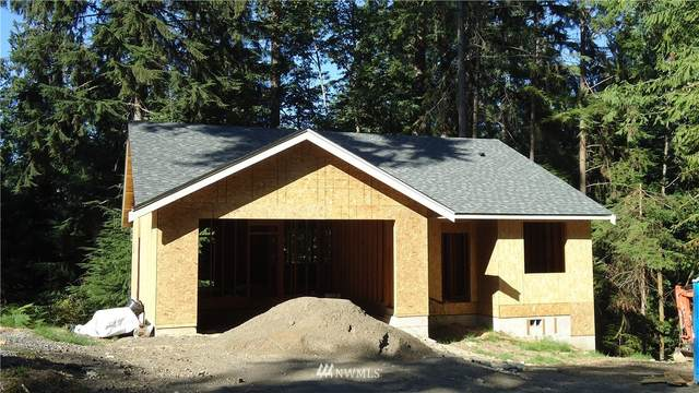 42 Louise View Drive, Bellingham, WA 98229 (#1718988) :: Mike & Sandi Nelson Real Estate
