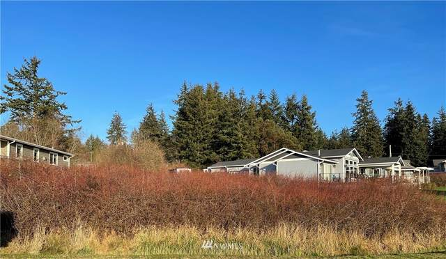 0 Dolphin Drive, Freeland, WA 98249 (#1719150) :: Front Street Realty