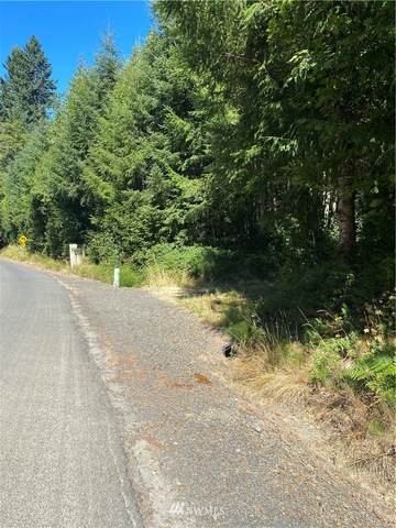 0 Coal Creek Road, Longview, WA 98632 (MLS #1719852) :: Community Real Estate Group