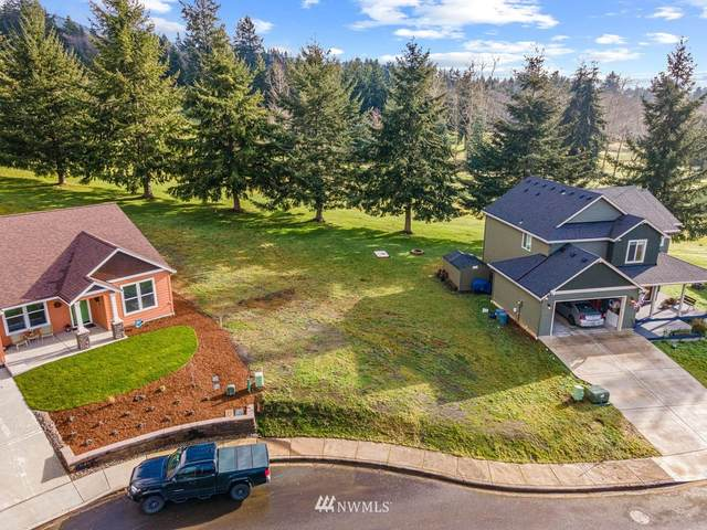 7 Linquist Lane, Cathlamet, WA 98612 (#1720021) :: Canterwood Real Estate Team