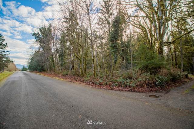 284 SE 258th Street, Ravensdale, WA 98051 (#1720331) :: Pickett Street Properties