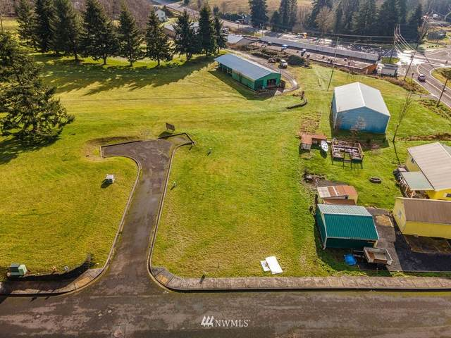 1 Linquist Lane, Cathlamet, WA 98612 (#1720393) :: Canterwood Real Estate Team