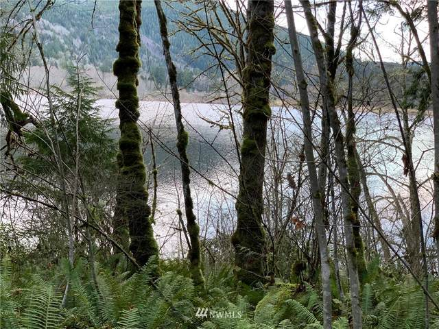 75 Crocker Lake Road, Quilcene, WA 98376 (#1720619) :: The Shiflett Group