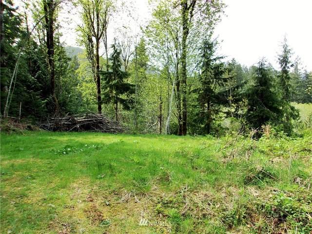 271 Elk Road, Brinnon, WA 98320 (MLS #1721448) :: Brantley Christianson Real Estate