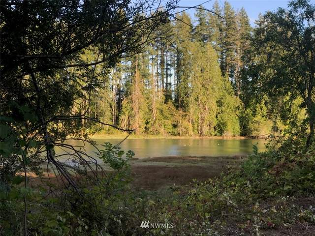 7240 E Grapeview Loop Road, Allyn, WA 98524 (#1721761) :: Priority One Realty Inc.