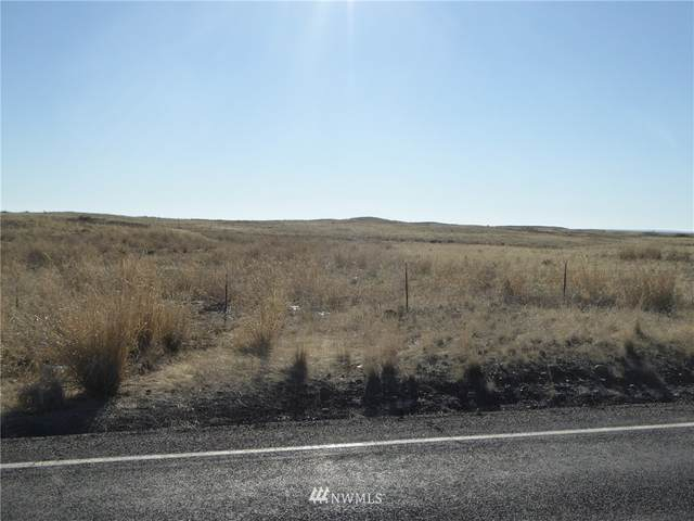 1 Nna State Highway 174 N, Grand Coulee, WA 99133 (#1722252) :: Priority One Realty Inc.