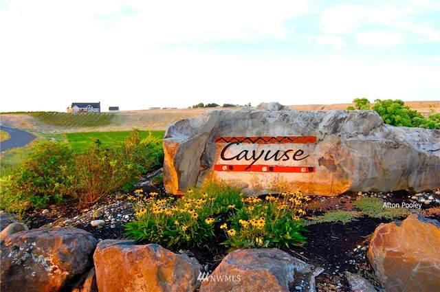 7463 Road E.3 NE, Moses Lake, WA 98837 (#1722385) :: Northwest Home Team Realty, LLC