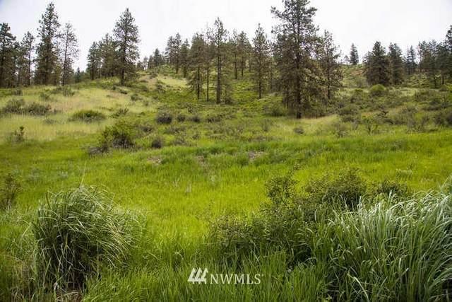 4745 Brisky Canyon Road, Cashmere, WA 98815 (#1722444) :: Shook Home Group