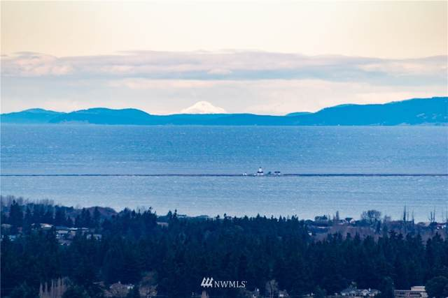 9999 Owls Nest Road, Sequim, WA 98382 (MLS #1722584) :: Brantley Christianson Real Estate